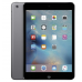 Apple iPad mini 2 Wi-Fi 16Gb Space Gray