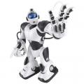 Радиоуправляемые модели, роботы