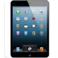 Защитные стекла для iPad Mini